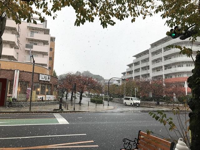 雪の日 (1)