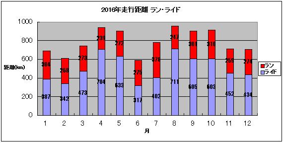 2016総括
