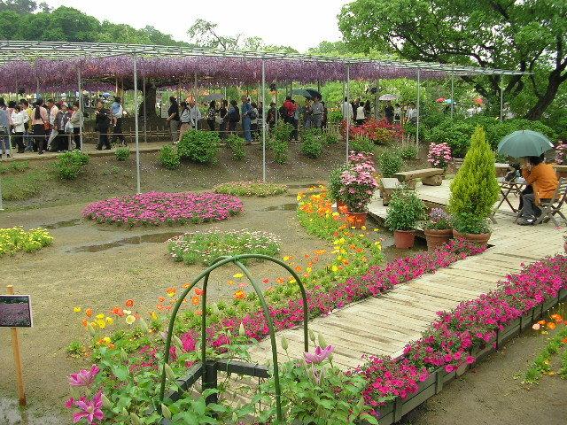 Ashikaga-Flower-Park.jpg