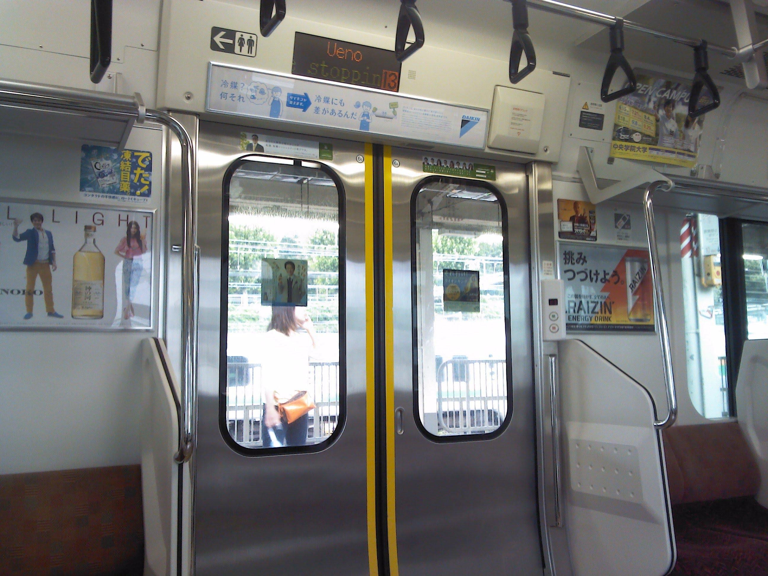 Traindoorfault-2.jpg