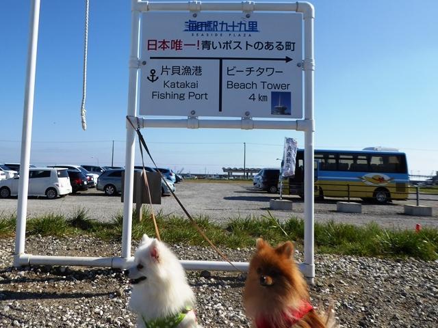20161103ポンころ海の駅①