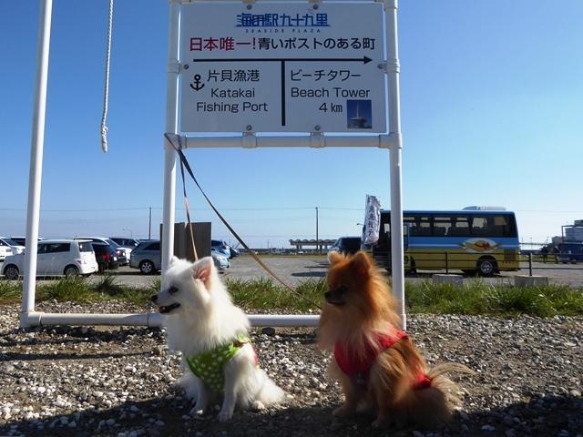 20161103ポンころ海の駅②