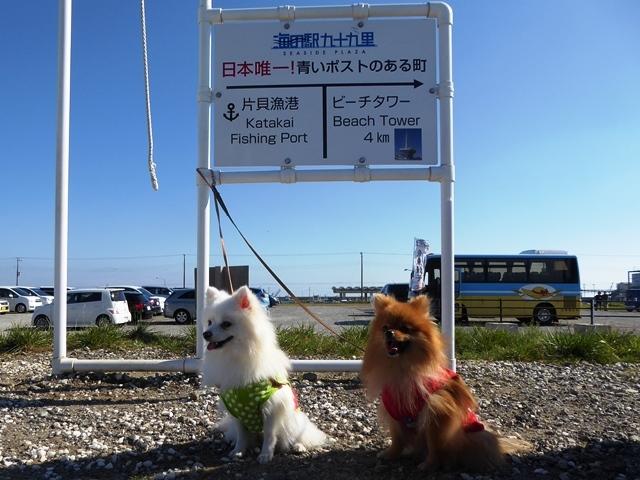 20161103ポンころ海の駅③