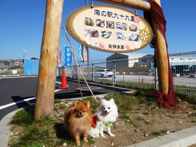 20161103ポンころ海の駅⑤