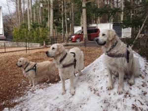 雪山の3人組