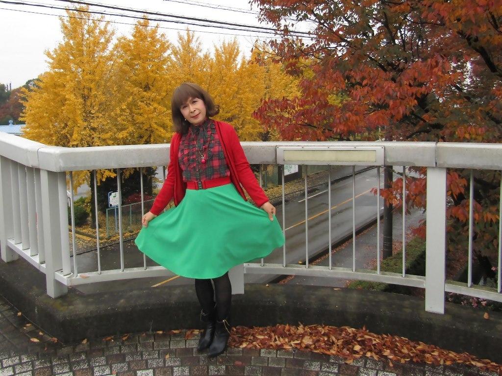 赤カーデ緑スカートB(5)