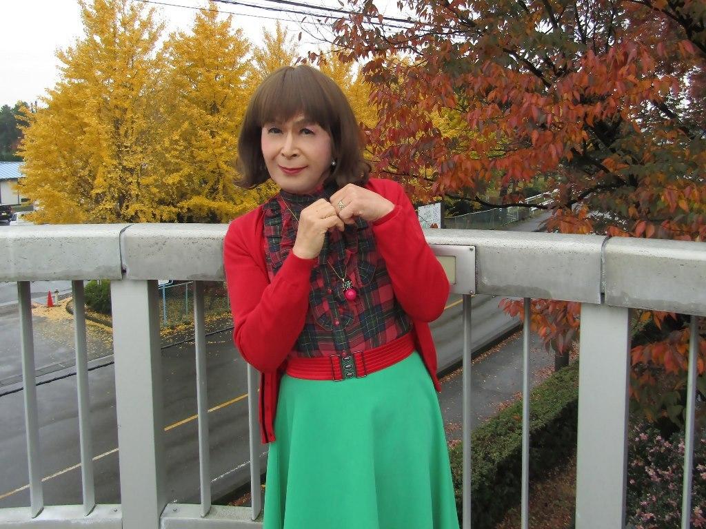 赤カーデ緑スカートB(6)