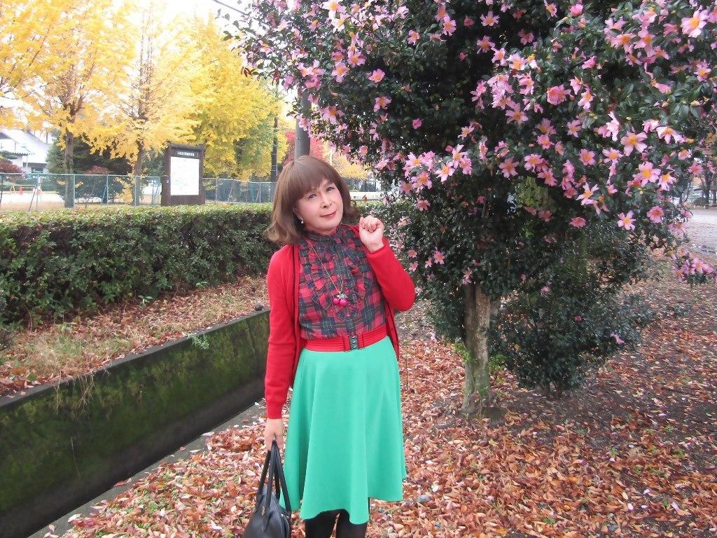 赤カーデ緑スカートC(8)