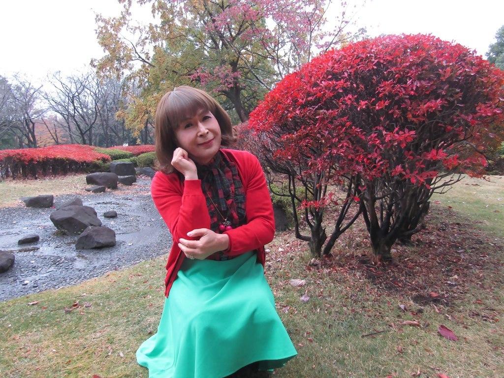 赤カーデ緑スカートD(5)