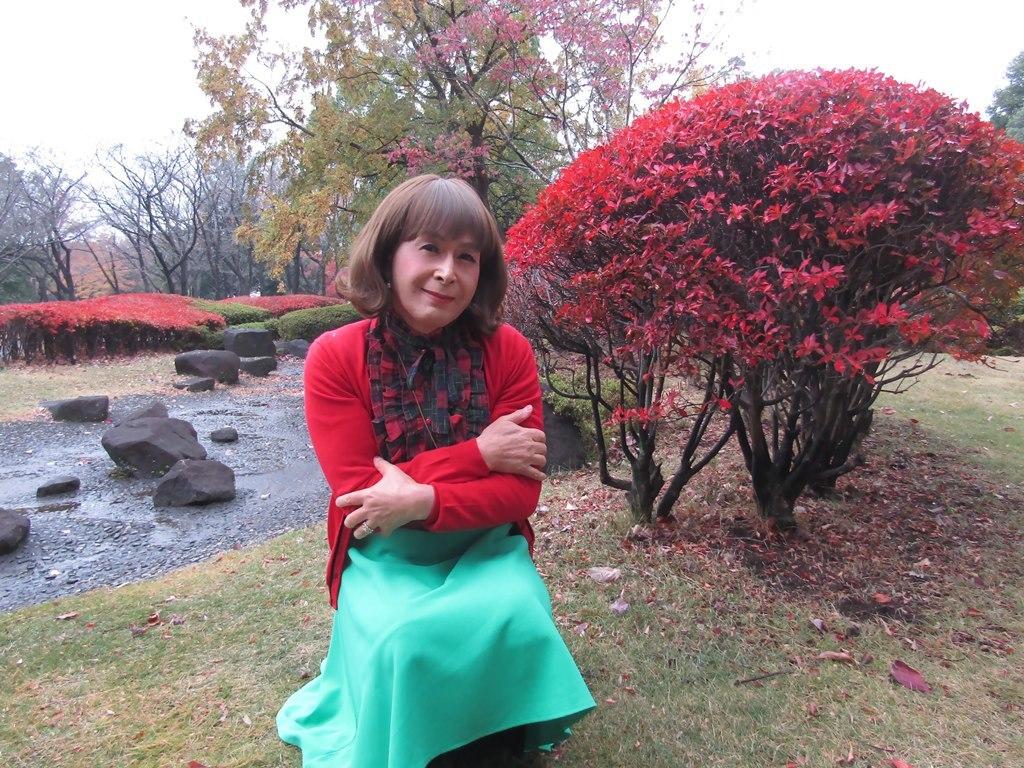 赤カーデ緑スカートD(6)