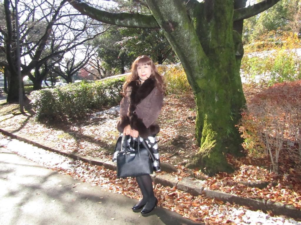 黒地に蝶柄ワンピ公園A(2)