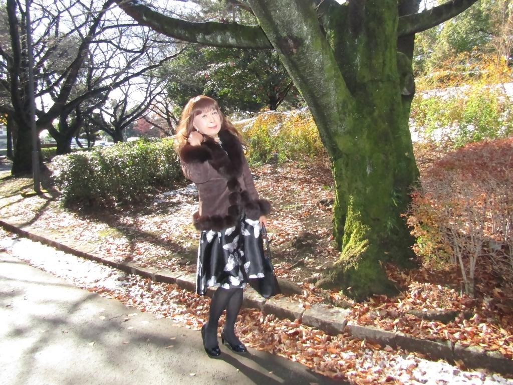 黒地に蝶柄ワンピ公園A(5)
