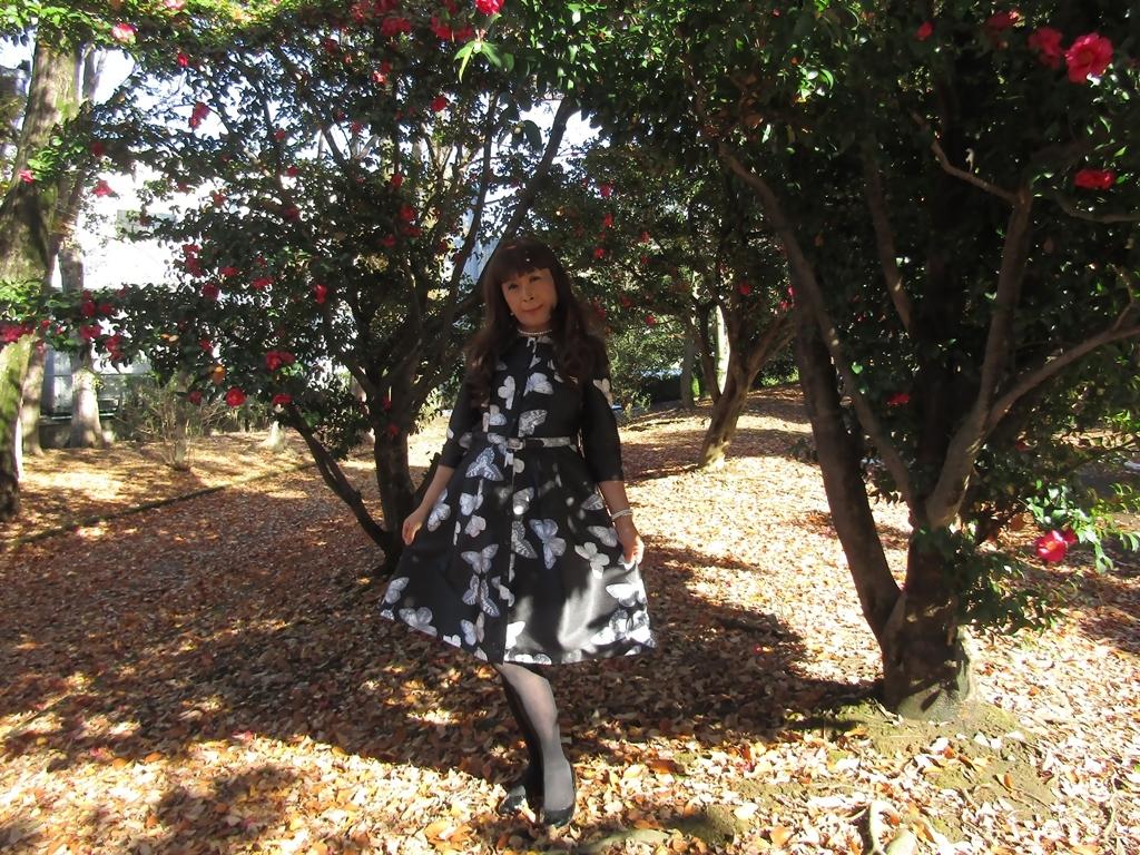 黒地に蝶柄ワンピ公園A(6)