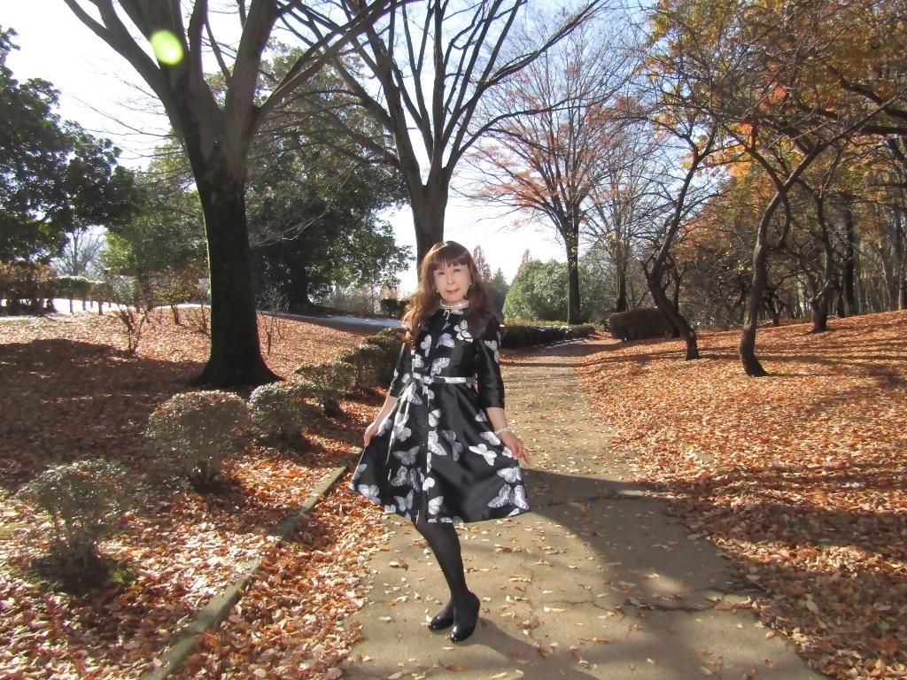 黒地に蝶柄ワンピ公園B(1)