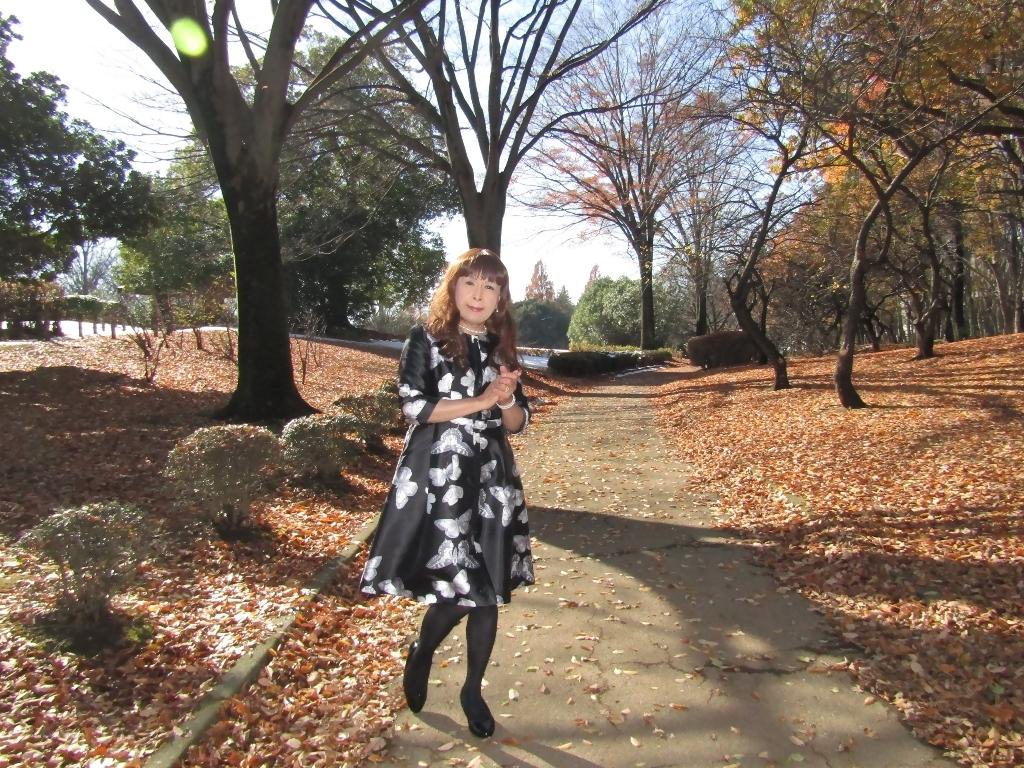 黒地に蝶柄ワンピ公園B(2)