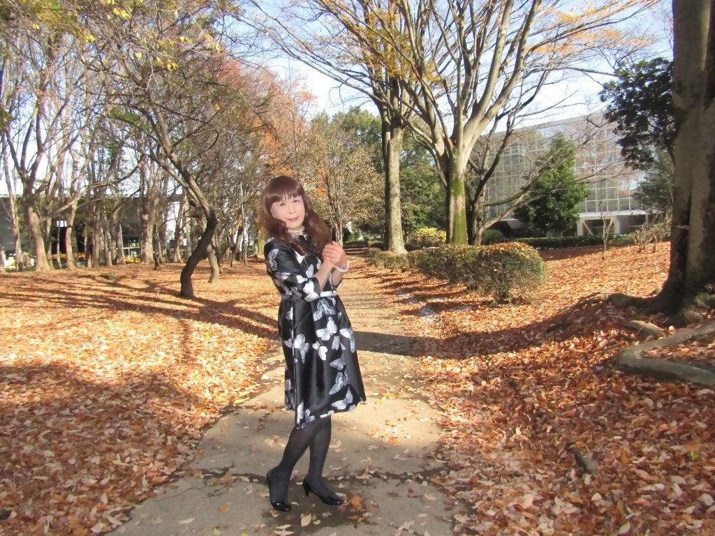黒地に蝶柄ワンピ公園B(9)