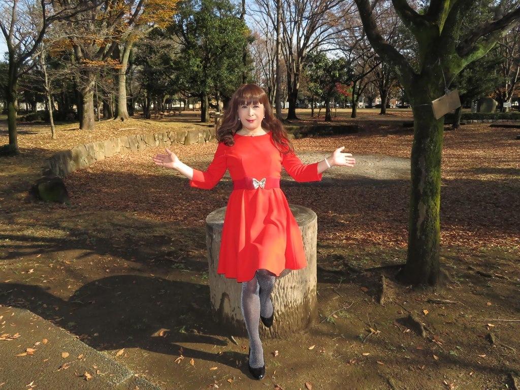 赤いワンピースC(9)