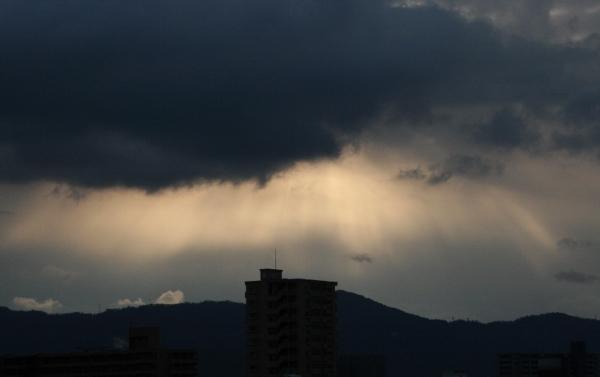 IMG_7097 朝の光(600x377)