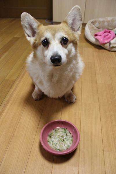 平成29年七草粥