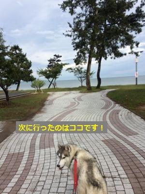 IMG_0149_convert_20170121222302.jpg