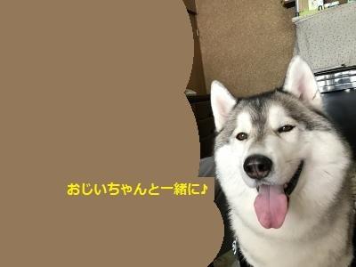 IMG_0921_convert_20170104195148.jpg