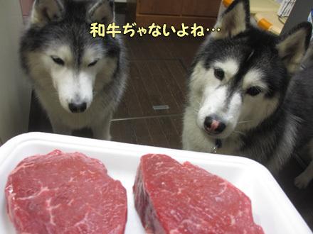 お年玉は牛肉