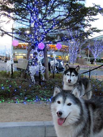 武蔵境駅前散歩