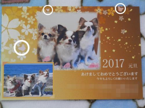 P1060961_convert_20170109214700.jpg