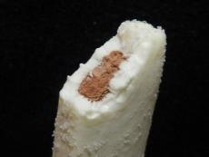 生チョコアイスバー