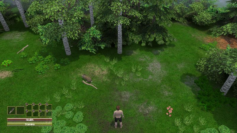 大自然の暴力 (6)