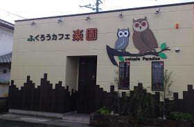 ふくろうカフェ 楽園 (3 )