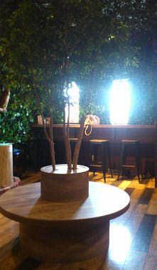 ふくろうカフェ 楽園 (7)