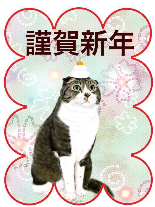 ジョニ子_convert_20161223153549