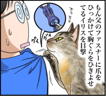 ヤバい猫3