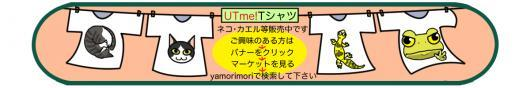 utmeバナー_convert_20170209160144