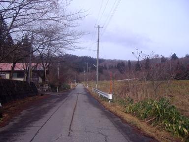 雪のない道路