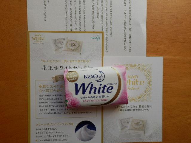 kaowhite2.jpg