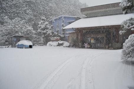冬の 玄関先