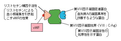 D775G010.jpg