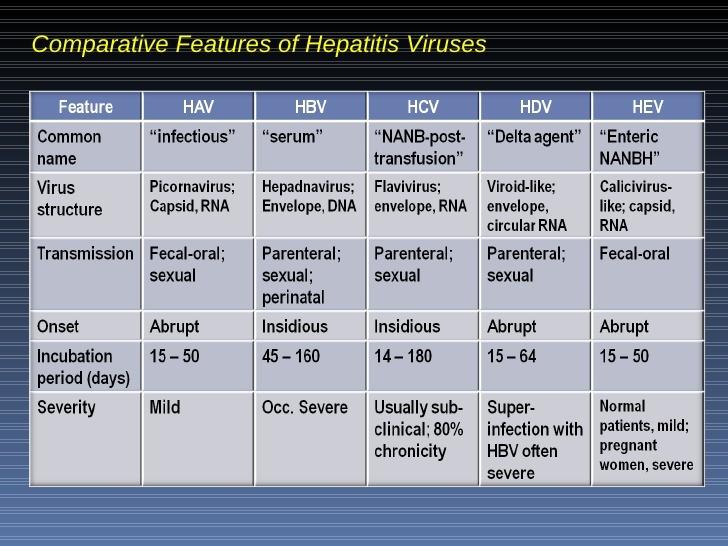 hepatitis-virus-53-728.jpg