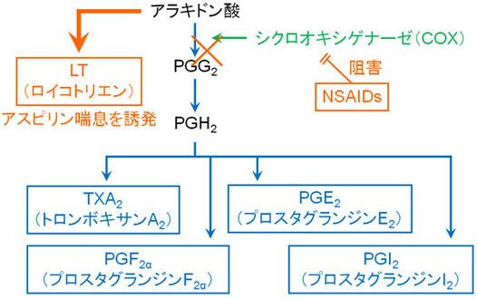 kyoyzai-iii4.jpg