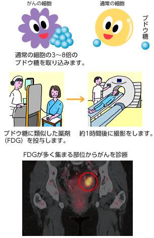 pet_01_item0001.jpg
