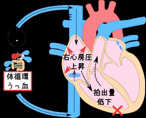 shinhuzen5.png