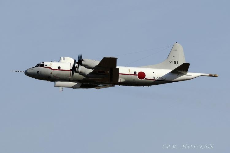 A-3393.jpg