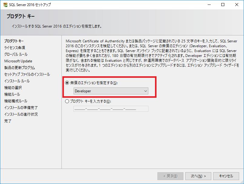 download_sqlserver_developer_04.png