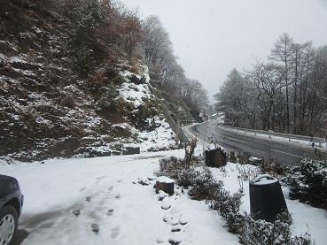 ついに雪景色