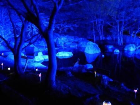 二之丸史跡庭園 イルミネーション 7