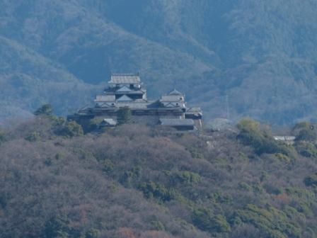松山総合公園からの眺め 松山城 2