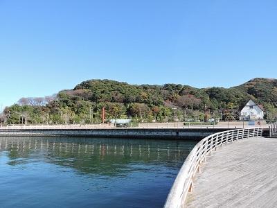 金ヶ崎、手筒山城の踏査(ブログ用)2016年12月3日 (1)