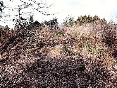 南越前町上別所茶臼山城跡踏査2017年1月6日ブログ (1)